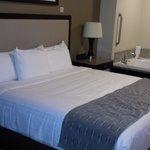 Clean, comfy bed!