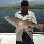 Red Fish with Capt. Matt