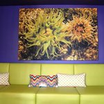 Cool anemone print and lounge couches
