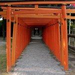 mini torii in front of Shinto Shrine