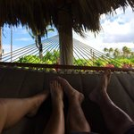 From the hammock, below the infinity pool