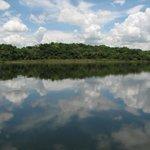 The Beautiful New River Lagoon
