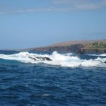 Lanai Wild Side Raft Adventure