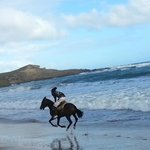 afternoon gallop on Perfect Storm. Horseback Riding St.Lucia