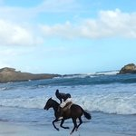 horseback riding St.Lucia