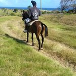 horseback riding St. Lucia