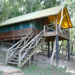 Cabin at Chaa Creek's Macal River Camp