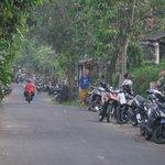 Petulu village road