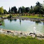 jardin et piscine naturelle