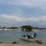 beach daw