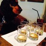 Bracken Whisky tasting