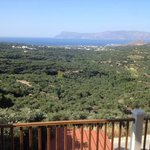View over olive groves to the coast