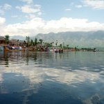 Dal lake in the early evenings