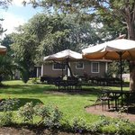 A Peace Haven in Arusha City centre