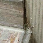Wall paper peeling