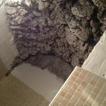 The loo is worth a visit for the volcanic rock ceiling