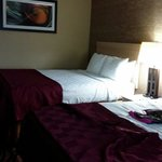 Nice room with double queen size beds