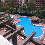 H10 Pool