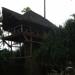 wonderful suite built close to nature