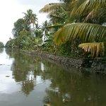 narrow kerala back water