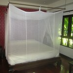 Large king-sized bed with mosquito net