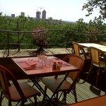 Vue panoramique sur lyon, de la terrasse