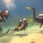 Adam is diving