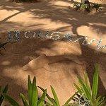 песчаные фигуры в отеле