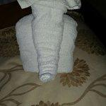 Cute little towel animal