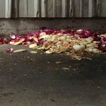 YUCK!!! vegetables on the ground