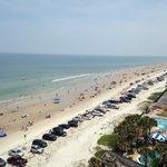 Memorial weekend 2014 Daytona Beach