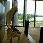The Megalodon, a popular photo spot