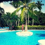 There are palm tree islands in the pool along with a swim up bar
