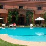 le jardin, la piscine