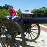 Cannon Display