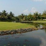 отель....поле для гольфа