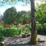 The upper garden