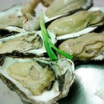 Freshly delivered Scottish oysters, ginger garlic and spring onion