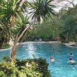 Von tropischen Pfanzen umgebener Pool (ca 30 m zum Meer)