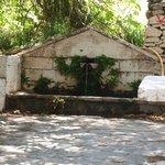 Vananda  la fontana