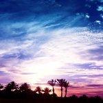 sunset movie night