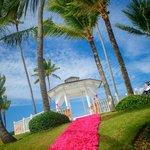 Our beach side gazebo wedding