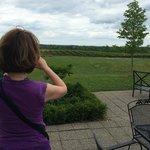 beautiful view of the vineyard