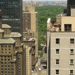 view from club lounge central park in distance