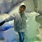 Ice Sculptures ??
