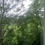 foto dalla camera sul parco adiacente