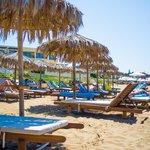 Beach umbrella, chair area