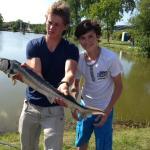 Vissen bij de Zuilen