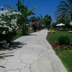 walk to paphos