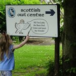 come and visit the Scottish Owl Centre